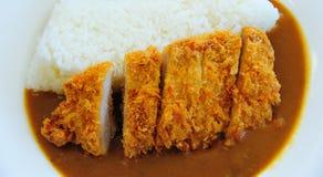 Tonkatsu med ris Arkivbilder