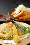 Tonkatsu and tenpura Royalty Free Stock Photo