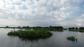 Tonle Sap湖暹粒柬埔寨 股票视频