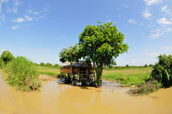 On the tonle sap in cambodia Royalty Free Stock Photo