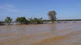 Tonle Sap river in Cambodia stock video footage