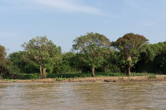 Tonle Sap Scenery Royalty Free Stock Images