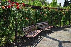 Tonnelle d'orange et de rose de rouge avec le banc Photographie stock libre de droits