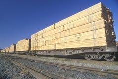 Tonnen Bauholz, das transportiert wird stockbild