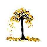 Tono amarillo de la vuelta del árbol en fondo aislado o blanco Fotografía de archivo