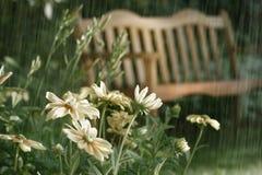 Tono de la sepia de las duchas del verano Imagenes de archivo