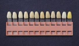 Tono del color de dientes Imagen de archivo
