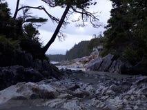 Tonquin海滩 库存照片