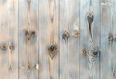 Tons blancs et bleus, fond en bois Photographie stock