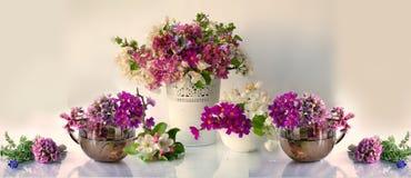 Tons de fleurs rose et blanc de ressort sur un fond blanc images stock