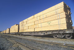 Tons of lumber being transported Stock Image