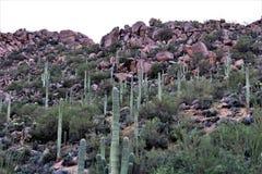 Tonto国家森林,亚利桑那U S 农业部,美国 库存图片