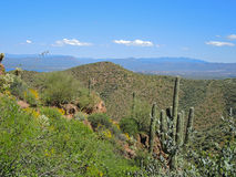 Tonto Hills Like Eden Stock Photos
