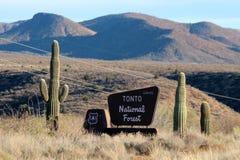 Tonto las państwowy, Arizona zdjęcia royalty free