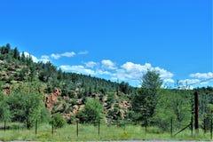 Tonto las państwowy z autostrady 87, Arizona U S Departament Rolnictwa, Stany Zjednoczone obrazy stock