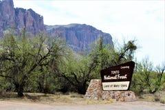 Tonto Nationaal Bos, de Afdeling van Verenigde Staten van Landbouw Forest Service stock afbeeldingen