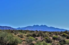 Tonto National Forest, off Highway 87, Arizona U.S. Department of Agriculture, United States. Scenic landscape, vegetation and mountain range view off of Highway royalty free stock photo