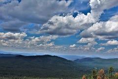 Tonto nationalskog, Arizona, Förenta staternaJordbruksavdelningen royaltyfria bilder