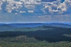 Tonto nationalskog, Arizona U S Jordbruksavdelningen Förenta staterna arkivbilder