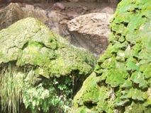 Tonto Natural Bridge Moss Rocks stock image