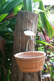 Tonwarenwaschbecken im Garten Stockfoto