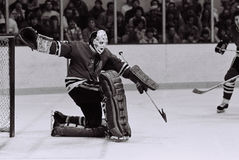 Tony Esposito Chicago Blackhawks goalie Royalty Free Stock Photo