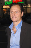 Tony Goldwyn Stock Photo