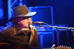 Tony Joe White 07/07/2014 Royaltyfri Bild