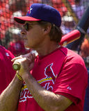 Tony LaRussa, st Louis Cardinals immagine stock