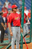 Tony LaRussa - St. Louis Cardinals manager Royalty Free Stock Photo