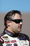 Tony Stewart Stock Photography