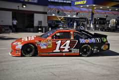 Tony Stewart Practices a TMS Immagine Stock