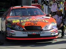 Tony u. NASCAR geht zum Movi Stockbild