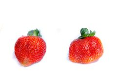 Too fresh sweet red strawberry`s with green hair royalty free stock image