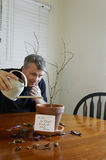 Is it Too Late. A man trying in vain to water his wife's dead plant after he forgot to water the plant Stock Photos