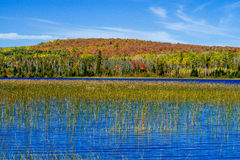 Toohey lake, autumn Royalty Free Stock Photography