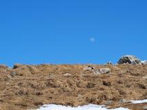 took with olympus mountain stock photo