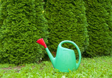 Tool of garden Royalty Free Stock Photography