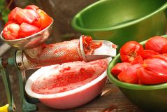 Tool for making tomatoes juice Royalty Free Stock Photography
