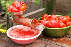 Tool for making tomatoes juice Royalty Free Stock Image