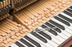Tool with vintage piano hammer mechanism. Prepare to repair Royalty Free Stock Photography
