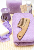 Tools for body care in the spa salon Stock Photography