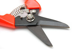 Tools - Cutter Stock Photography