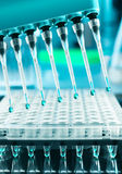 Tools for DNA amplification, scientific background Royalty Free Stock Photography