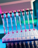 Tools for DNA analysis. Tools for PCR amplification of DNA: 96-well plate and automatic pipette stock image