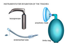 Tools for endotracheal intubation royalty free illustration