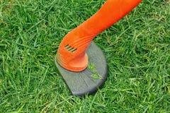 Tools for garden care. Manual electric lawn mower, shovel, rake, machete, scissors. Trim the green lawn. Garden care stock photography