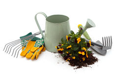 Tools for gardening. Royalty Free Stock Photos