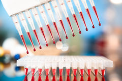 Tools for PCR amplification of DNA Royalty Free Stock Photos