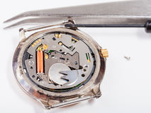 Tools and replacing battery in watch close up Stock Photo